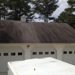 Roof Cleaning Before Bishopville, SC