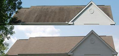 roof cleaning florence south carolina