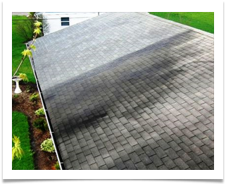 roof cleaning lugoff