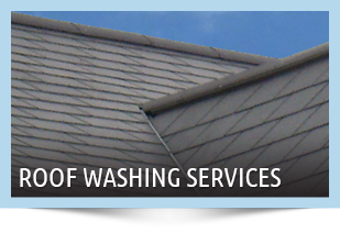 Roof Washing Sumter SC