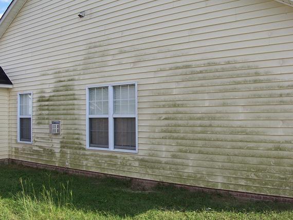 residential pressure washing florence sc