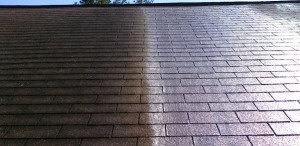 roof cleaning lugoff sc