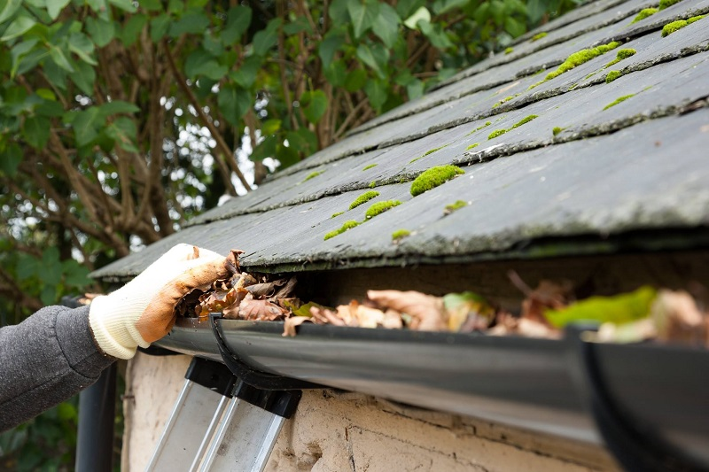 Why You Need a Roof Gutter Protection for Your House